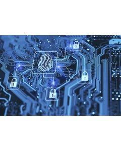 MBA em Defesa cibernética nas organizações